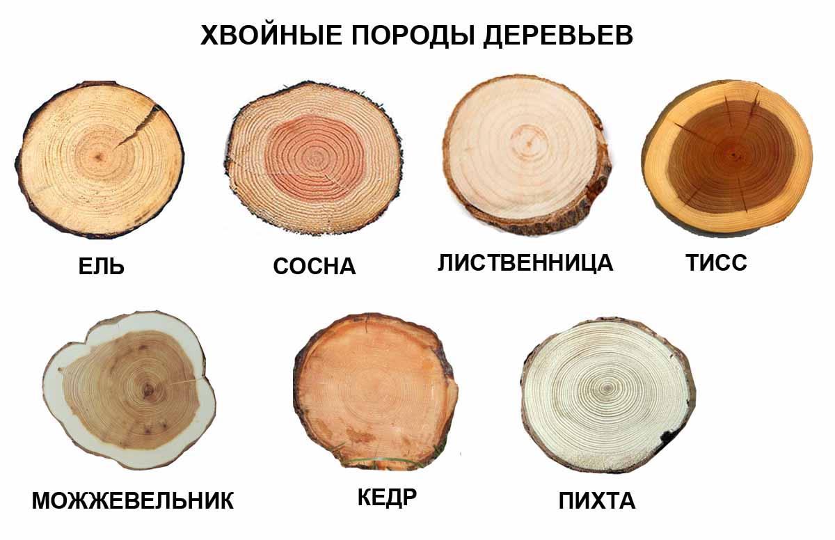 Вязаные женские шапки из ангоры изоражения